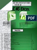 Ms Excel Module