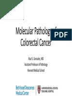 Molecular Colon Cancer