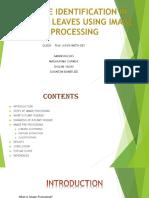 Presentation on Plant disease identification using matlab