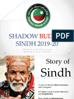 Sindh Shadow Budget 2019-20 by PTI