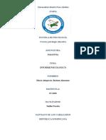 Final de La Pasantia Informe Psicologico de Maria Alt Jimenez a. y Lisset Yudi Paola
