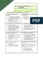 332201921-Prueba-ciencias-6-fotosintesis-y-cadenas-alimentarias.docx