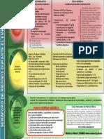 semaforo2018.pdf