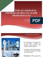 Pautas Para Elaborar El Informe Ppp