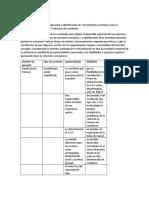 selecion de sociedades 3.docx