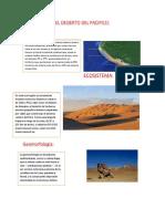 El Desierto Del Pacifico