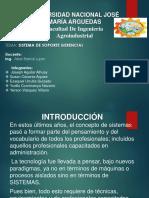 SISTEMAS DE SOPORTE.pptx