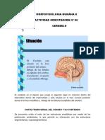 MFH+II+-+AO+06.pdf