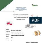Informe 6 Botanic A