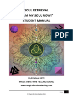 SOUL RETRIEVAL MANUAL