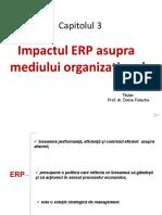 ERP_Cap3
