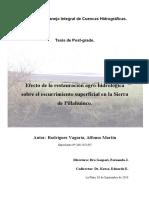 Efecto de La Restauración Agro Hidrologica Sobre Escurrimiento Cuenca Pillahuico