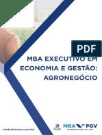MBA EXECUTIVO FGV EM ECONOMIA E GESTÃO