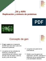 ADN ARN1.ppt