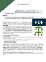 evolucion - ecologia y ambiente ( tercer año electivo).doc