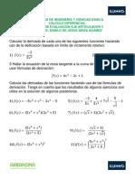 Taller Eje 3 Calculo Diferencial