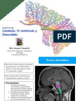 192891766 Preguntas en La Entrevista Psicologica PDF