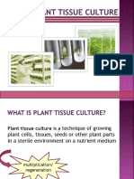 Plant_Tissue_Culture_KJT.pptx