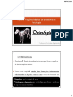 Aula 2 – Osteologia_2 Folhetos