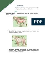 Osteologiapatriciastierdeoliveira 150830075541 Lva1 App6891