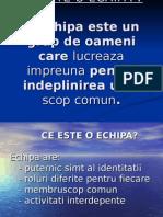 CE ESTE O ECHIPA