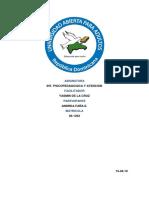 Tarea 5 de Int. Psicopedagogica y Atencion