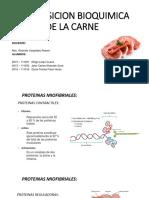 (Terminado)Composicion Bioquimica de La Carne