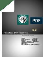 PRACTICA PROFESIONAL . actividad 2.docx