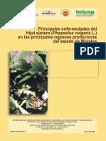 Frijolejotero.pdf