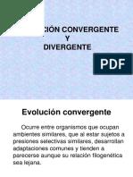 Evolucio n Convergente y Divergente