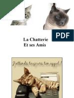 Chatterie Et Ses Amis