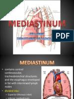 Mediastinum 1234