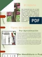 TIPOS DE INJERO PPT.pptx