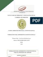 Proceso de Inconstitucionalidad - Copia