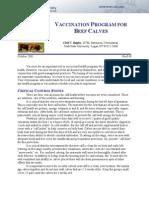Vaccination Program for Calve