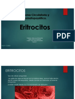 Equipo 1 ERITROCITOS 19-3.pdf