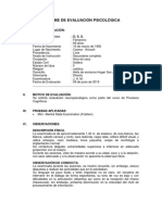 Informe Minimental d.s.s.