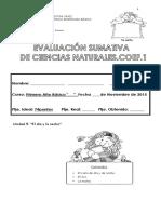Evaluacion Sumativa c.n Unidad 2 , Parte II...2015
