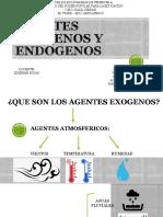 Agentes Exogenos y Endogenos