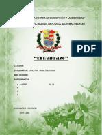 El Baguazo