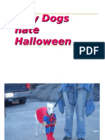 Why dogs hate Halloween!