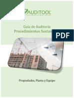 GuÝa Procedimientos Sustantivos para Propiedad, Planta y Equipo.pdf
