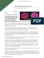 HPV – Uma Doença Feminina Que Mata Homens