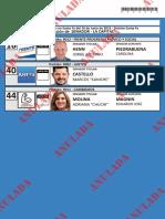 Candidato a senadores