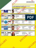 Candidatos a intendente