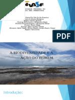 Barra Grande Relatorio
