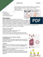cytoskleton2015