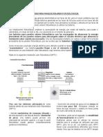 Baterías Para Paneles Solares Fotovoltaicos