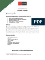 Guía de Aprendizaje nº 2 Movilización de pacientes CGE UA 2019