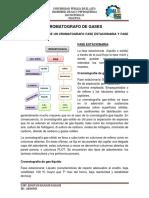 GASNATURAL2CROMATOGRAFIA